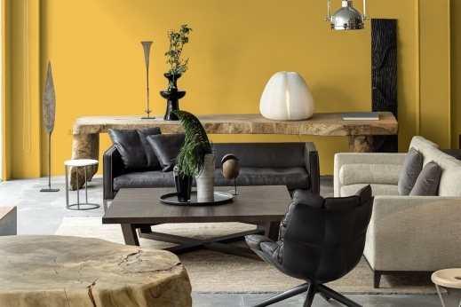 Fascinating Paint Color Trends For Living Rooms Euskal Houseplansidea Host/2016/01 Images