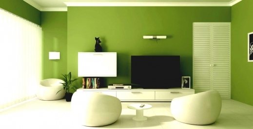 Stylish Wall Colors For Living Room India Euskal Houseplansidea Host/2016/01 Image